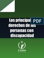 33 DH Princi Discapacidad