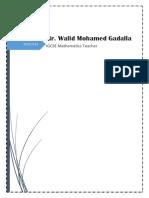 Walid Cv 2019