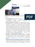 Odontología Forense MP