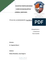 286883868-Monografia-Equilibrio-y-Elasticidad.docx
