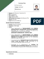 Curriculum Vitae - Ingenieros HSEC - Antapaccay - Wilberth Torres