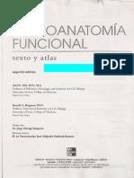Neuroanatomia AFIFI