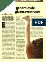 avestruz.pdf
