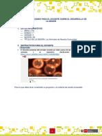 CTA1-U3-S04-Guía_d.docx