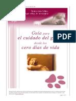 guía final gato.pdf