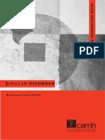 Bipolar Disorder an Information Guide 200929142055