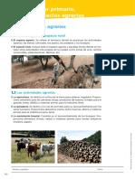 02_adaptacion curricular.pdf