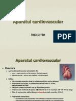 Prezentare aparat cardiovascular4