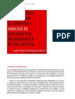 articulo_Irodriguez salas de epoca.pdf