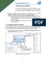 Curs 1 Formatarea Celulelor in Excel