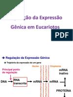 05_Regulacao_eucariotos