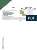 Cronograma de Actividades_OTROS_PLAN TESIS