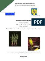 Tehnologia de cultivare a cerealelor pentru boabe în condiţii ecologice (2).doc