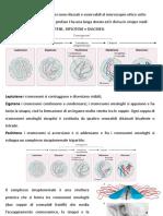 lezione03sn.pdf