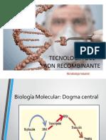 Tecnología en el ADN RECOMBINANTE