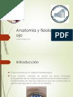Presentación Anatomia y Fisiologia Ojo