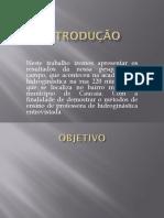 INTRODUÇÃO HIDROGINASTICA