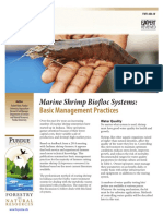 Arine Shrimp Biofloc Systems- Basic Management Practices