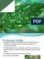 zoa_exafanisi-pc4-e1-3o