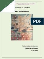 Luis Miguel MARTIN Seleccion de Estudios