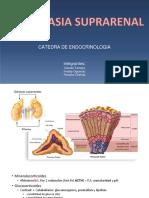 Endocrino hiperplasia suprarenal