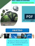 2018-10-31-14_4747-huella y bio.ppt