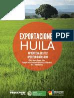 huila_exportaciones.pdf