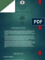 Diapo Sociologia Mercado Sondeo