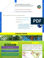 Agro Bacterium