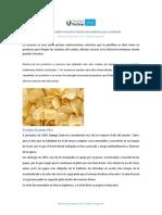 SESION_I_LECTURA_CURIOSIDADES_INVENTIVAS.pdf