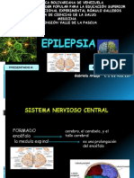 Epilepsia y Convulsion