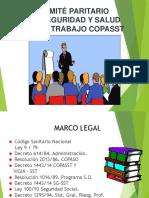 COMITE PARITARIO 1