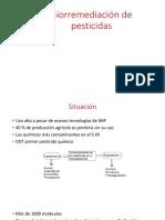 Biorremediación de Pesticidas