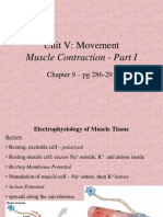 A&PI - Day 19 - Muscle Contraction I