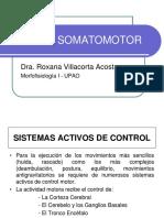 Fisiología Del Sistema Somatomotor - Dra. Villacorta