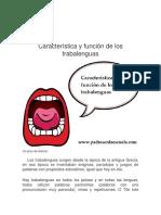Característica y Función de Los Trabalengua1
