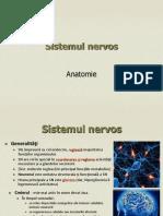 Prezentare sistemul nervos2