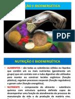 Nutricao e Bioenergetica
