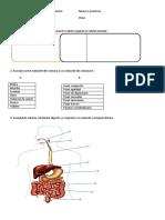 celula_tesut_organism a 6 a.docx