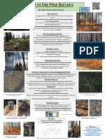 fire poster pdf