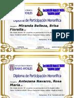 Diploma de Participacion 3