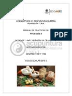 Manual de Practicas Fito 2