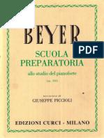 Beyer_Piccioli.pdf