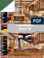 Armando Iachini - El Pino, Un Elemento Ecoamigable, Parte II