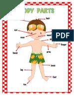 body_pdf
