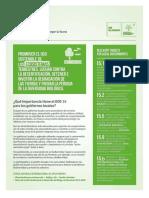 Gobiernos Locales Objetivos de Desarrollo Sostenible de La Agenda 2030