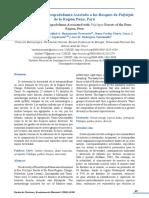 Evaluación de la artropodofauna asociada a los bosques de Polylepis de la Región Puno, Perú