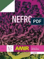 Amir Nefro