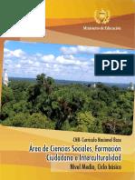 CNB Ciencias Sociales Ciclo Básico.pdf