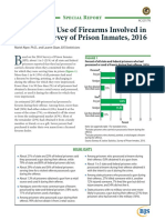 DOJ Study of Gun Usage During Crimes